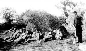Трећепозивац чува заробљене аустроугарске војнике на Церу августа 1914. године