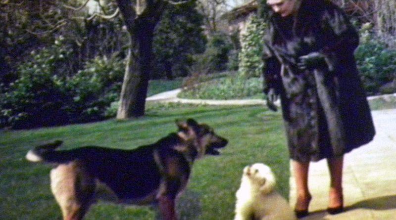 Јованка Броз раставља завађене псе